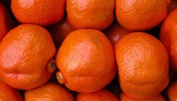 Argentina exportará mandarinas a Colombia