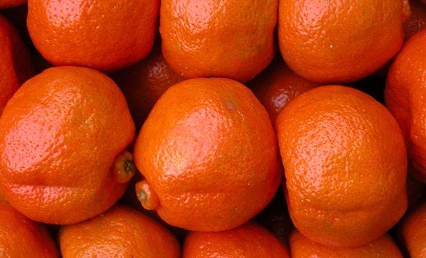 Argentina ocupa el 9° puesto como proveedor de alimentos de Colombia.