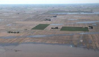 Minimizando impactos: manejo del nivel de napas en zonas de llanura