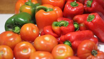 Todo sobre el manejo de tomate y pimiento