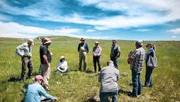 Manejo Holístico: ¿Puede cambiar el rol de la ganadería en el futuro?
