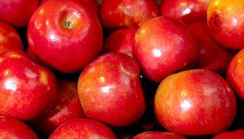 Llegan a India las manzanas argentinas