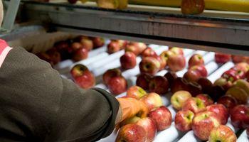 """Manzanas y peras podrán incorporar el sello de calidad """"Alimentos Argentinos"""""""