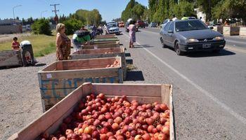 Crisis frutícola: productores de Río Negro regalaron manzanas en la Ruta 22
