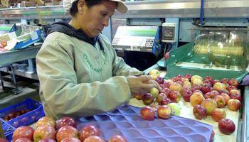 Chile exportó nueve veces más manzanas que la Argentina