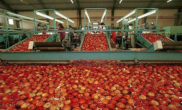 En lo que va del año se compraron del exterior más de 1.000 toneladas de manzanas y este año alcanzaría un récord.