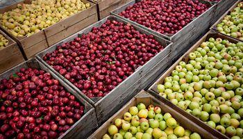 Agroindustria: piden suba de reintegros a las exportaciones