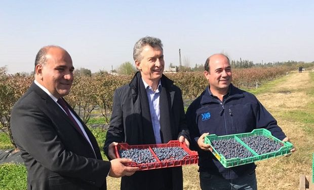 El presidente Macri junto a Manzur, gobernador de Tucumán y Estrada, productor.