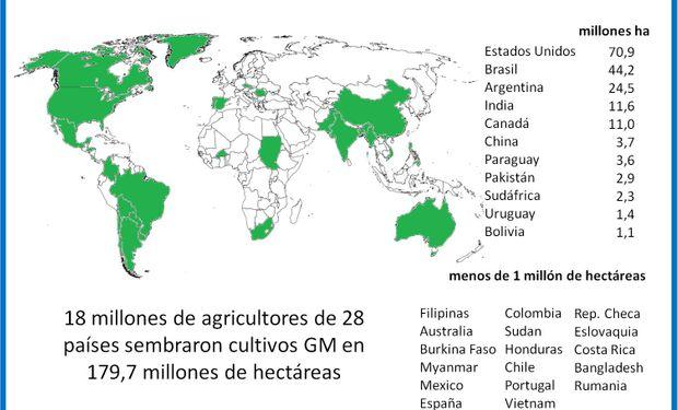 Argentina continúa siendo uno de los principales productores de cultivos GM, luego de EEUU y Brasil, con 24,5 millones de hectáreas en 2015