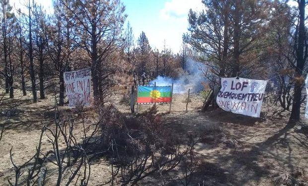 Denuncian la usurpación de mapuches en un campo de El Bolsón