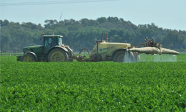 Debaten sobre el correcto uso de fitosanitarios
