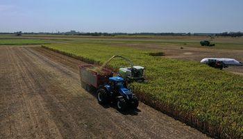 Los números de la maquinaria agrícola argentina: estiman que el sector genera 26.500 empleos directos