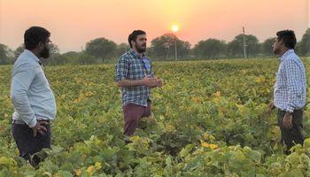 Argentina tendrá un representante agrícola en la India: quién es el elegido