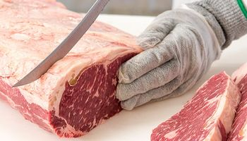 Una delegación de rabinos llegaría de Israel para garantizar la exportación de carne kosher