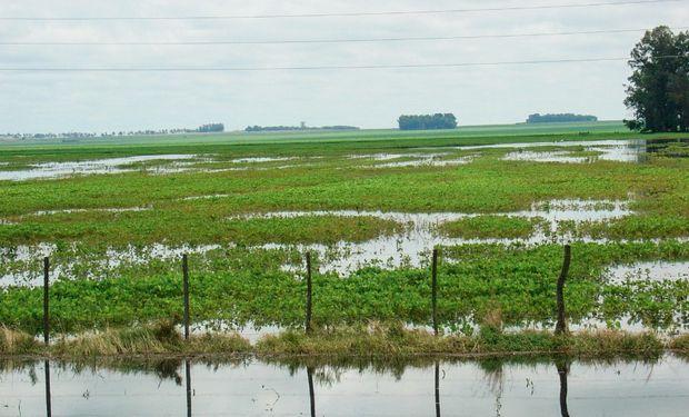 La inundación afectó fuertemente al noroeste bonaerense. Foto: Ministerio de Agroindustria de la Nación.