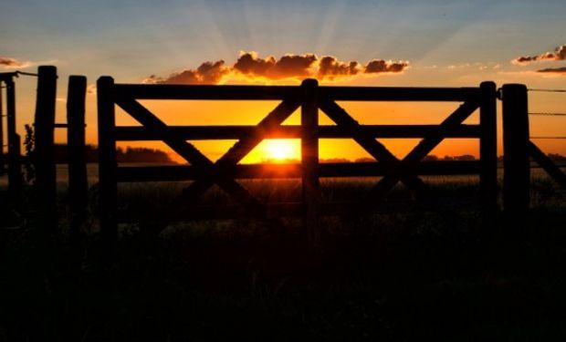 Consideraciones actuales del mercado inmobiliario rural.