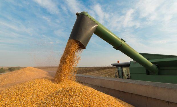La orden de China de detener compras en Estados Unidos presiona a los granos