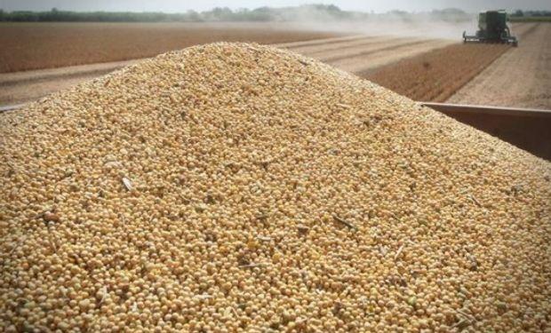 Leves variaciones, con soja en alza y cereales en baja.