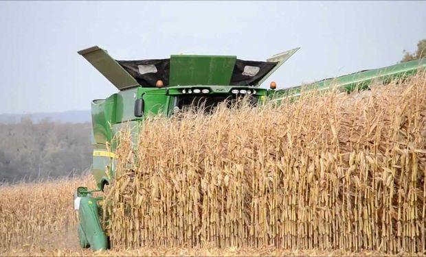 Queda mucho camino por recorrer para definir los rindes y posteriores stocks de consumo para la soja y el maíz.