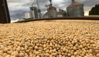 Bajas generalizadas en el mercado de granos de referencia para cerrar la semana