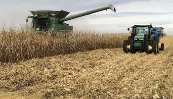 Subas para soja, trigo y maíz en Chicago, a la espera de un informe que puede cambiar la tendencia