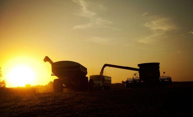 Récord en Matba-Rofex: en 2020 se negociaron 53,4 millones de toneladas de soja, trigo y maíz