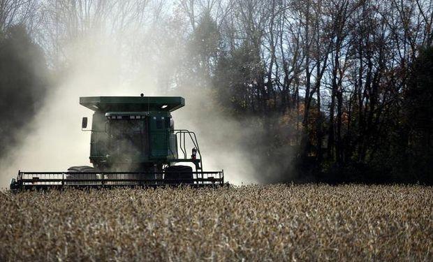 Señales de la demanda y debilidad del dólar: la soja podría tener la mejor semana en ocho meses