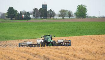 El mercado de granos está expectante de los datos de siembra y stocks en Estados Unidos
