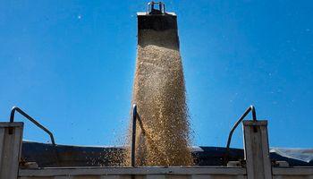 Mercado de granos: en Rosario hubo ofertas de compra alcistas por la soja y el trigo