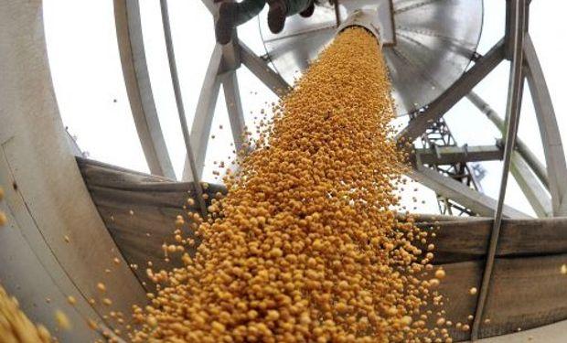 También en trigo la demanda reacciona a los bajos precios y enciende una luz de esperanza.