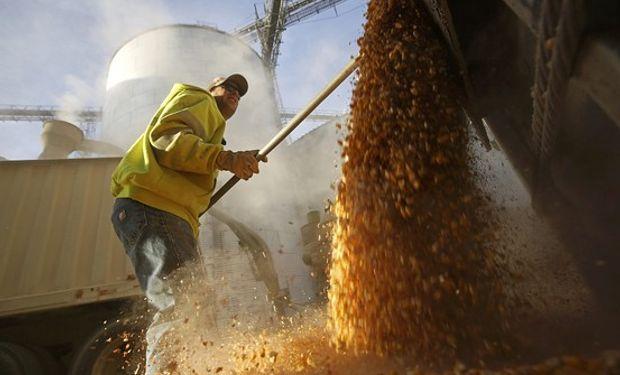 En la Argentina la trilla del cereal avanza a buen ritmo pero a fases muy primarias, con alrededor del 8% del total. Además, el programa de embarques recién comienza.