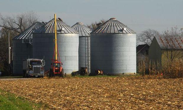 Operadores esperan un recorte de 20 millones de toneladas para la cosecha de maíz en la campaña 2019/20 de Estados Unidos.