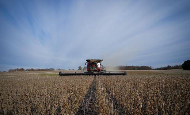 Los 9 gráficos que mira el mercado de granos hoy