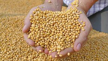 Fuerte suba para el precio de la soja, que se acerca a un máximo de 9 años