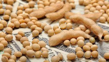 La soja superó los US$ 420 en Chicago: cuánto se pagó en el mercado local