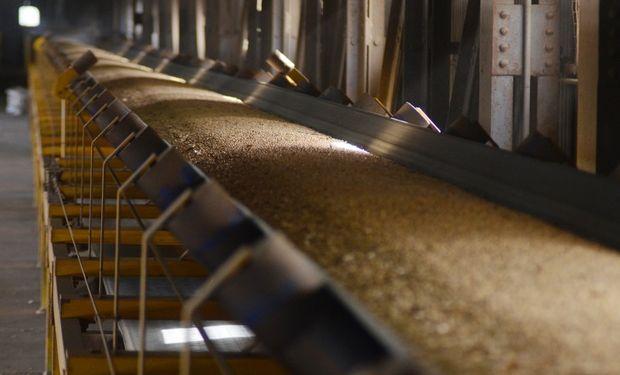 Mercado local: subió el precio de la soja y cayó la oferta por el trigo de la nueva campaña