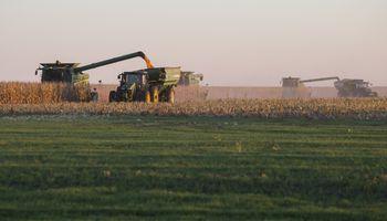 En 8 gráficos: así quedó la oferta y la demanda de soja, trigo y maíz para la nueva campaña