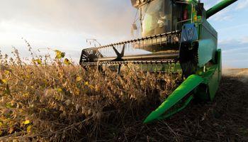 Cómo impactó el USDA sobre el mercado de granos de Chicago y Rosario
