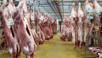 Carne paraguaya ya se vende más cara que la argentina