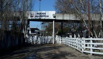 Entre Cañuelas y Ezeiza se decide el destino del nuevo Mercado de Hacienda de Liniers