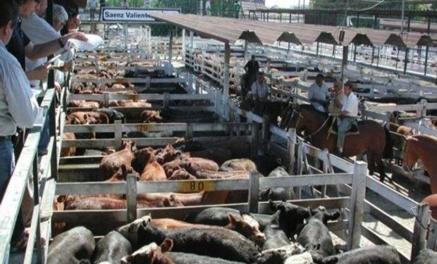 La concesionaria del predio de Mataderos debería devolverlo el 31 de diciembre.