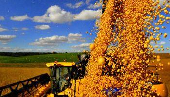 El mercado de granos en el 2015