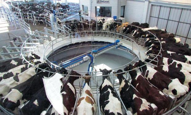 Mientras la producción de leche en Argentina se estancó, en Brasil creció de una manera descomunal en los últimos años.