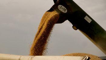 Soja: reñida puja entre oferta y demanda