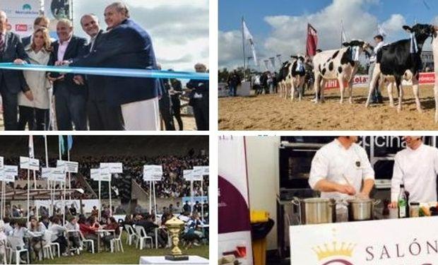 Se desarrollarán una gran cantidad de actividades destinadas a productores y referentes de toda la cadena de la lechería. Fotos de archivo: Mercoláctea 2014