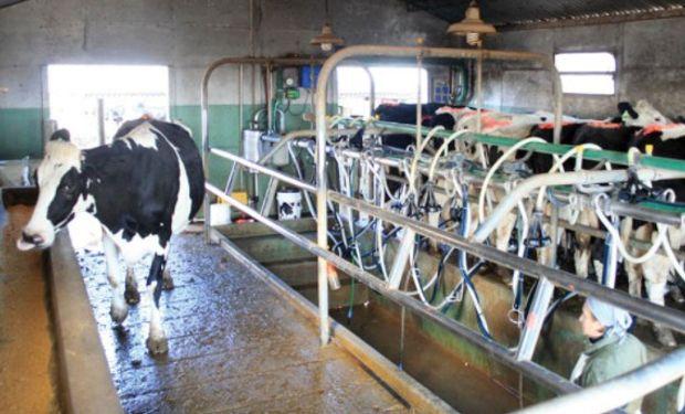 Aseguran que actualmente, el productor recibe entre $5,30 y $6,10 por litro de leche producido, mientras que el costo alcanza los $7.