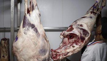 México comprará carne sin aranceles
