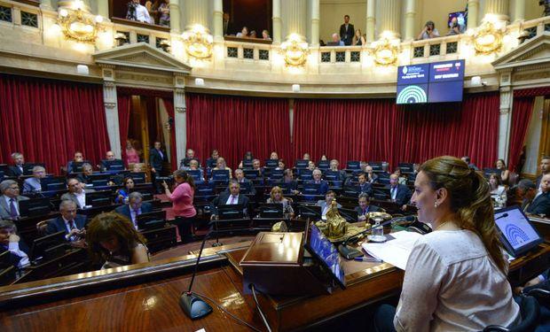 Senado aprobó ley para salir del default con votos del FpV.