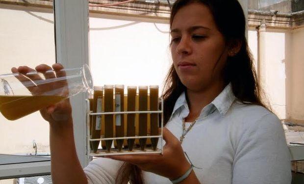 Para que las microalgas produzcan compuestos de alto valor comercial hay que estresarlas.
