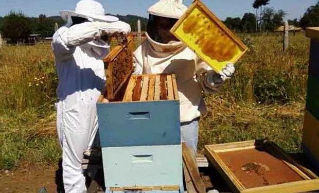 La miel bonaerense estuvo de gira comercial por Turquía.